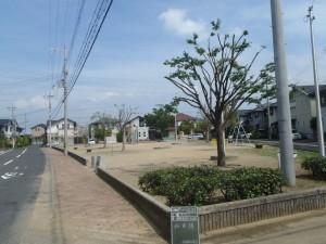 今日も岸和田の公園剪定でしたが、暑さが異常だった・・・。熱中症にならないように こまめに休憩をしながら作業してます。